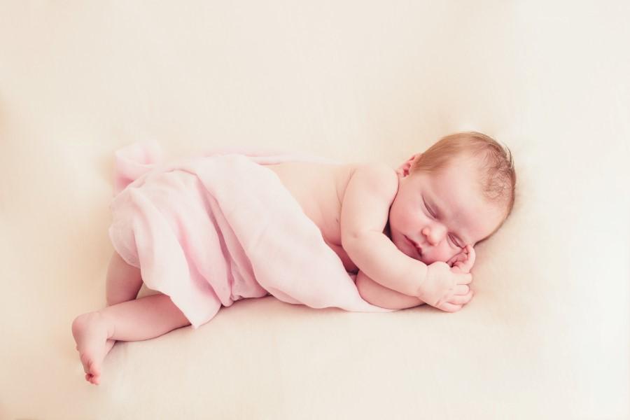 Baby Fern (1)