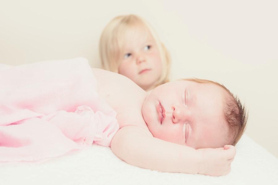 Baby Fern (9)