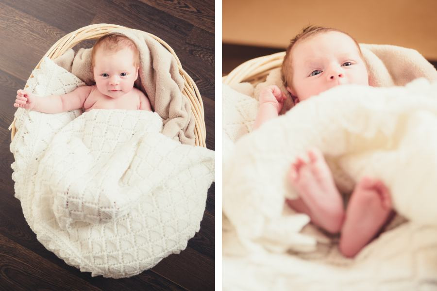 Baby Fern (5)